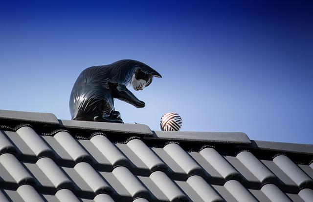 grafitowy dach
